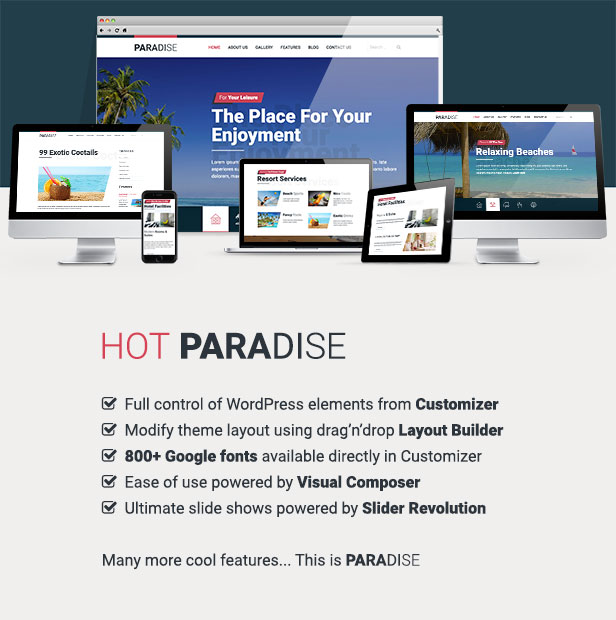 Hot Paradise Theme Features
